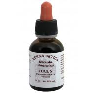 Macerato idroalcolico di Fucus