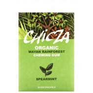 Chewing gum aroma menta verde
